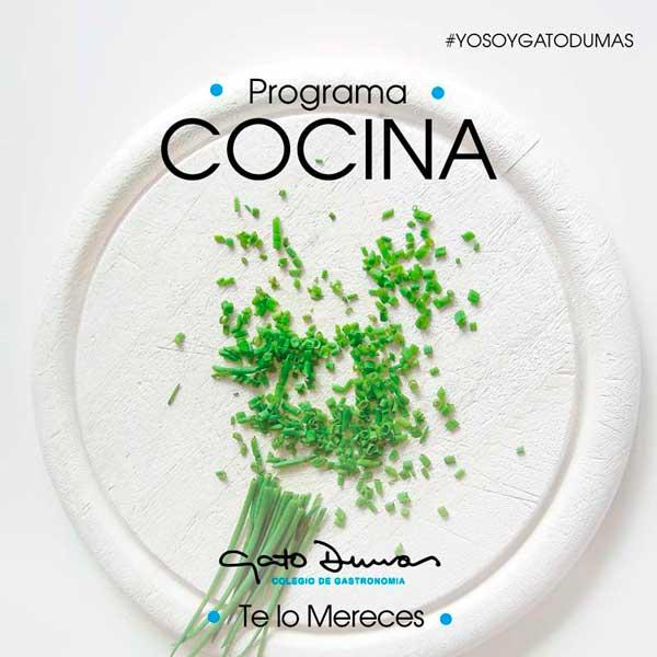 Programa de cocina - Gato Dumas Colegio de Gastronomía