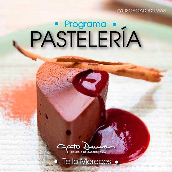 Programa de pastelería - Gato Dumas Colegio de Gastronomía